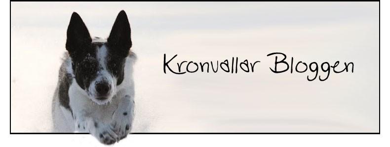 KRONVALLAR-BLOGGEN